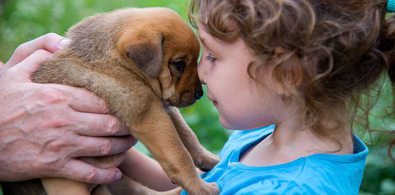 A young child places their nose against the puppy's snout